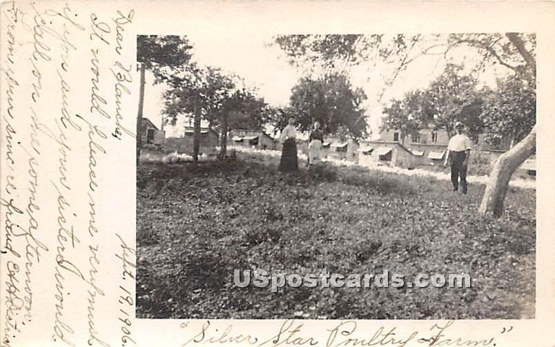 Farm - Narrowsburg, New York NY Postcard
