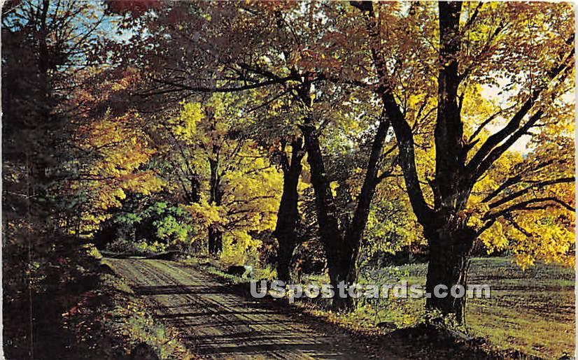 Country Road - Narrowsburg, New York NY Postcard