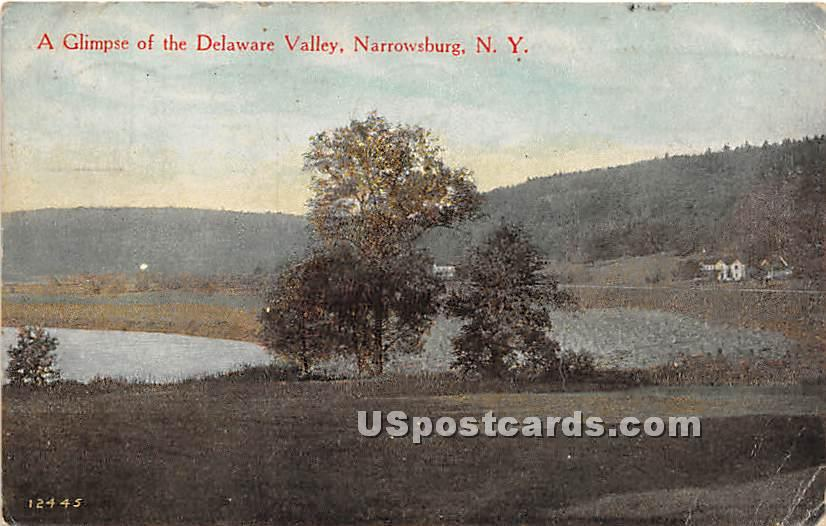 Glimpse of the Delaware Valley - Narrowsburg, New York NY Postcard