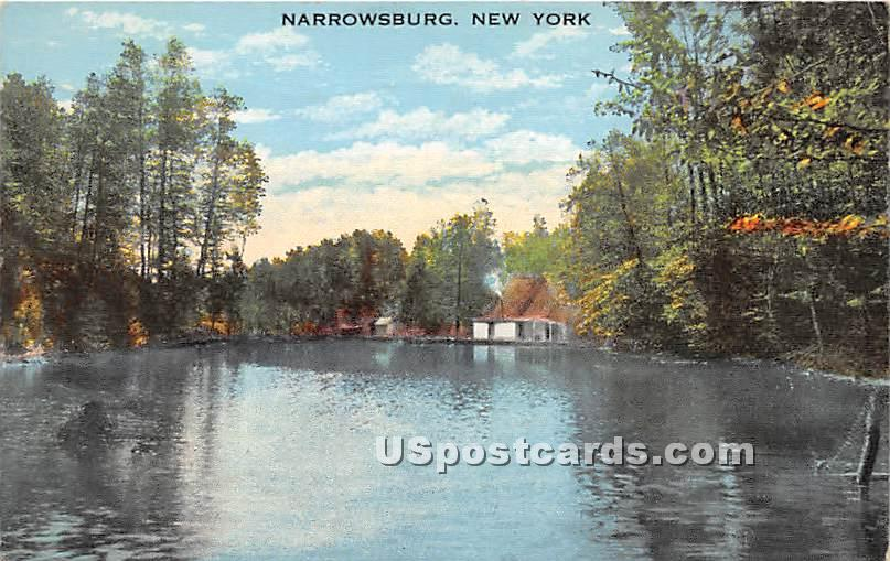Water View - Narrowsburg, New York NY Postcard