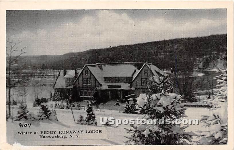 Winter at Peggy Runaway Lodge - Narrowsburg, New York NY Postcard