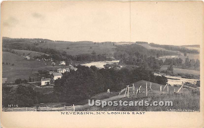 Looking East - Neversink, New York NY Postcard