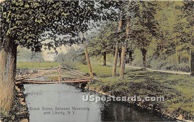 Brook Scene - Neversink, New York NY Postcard