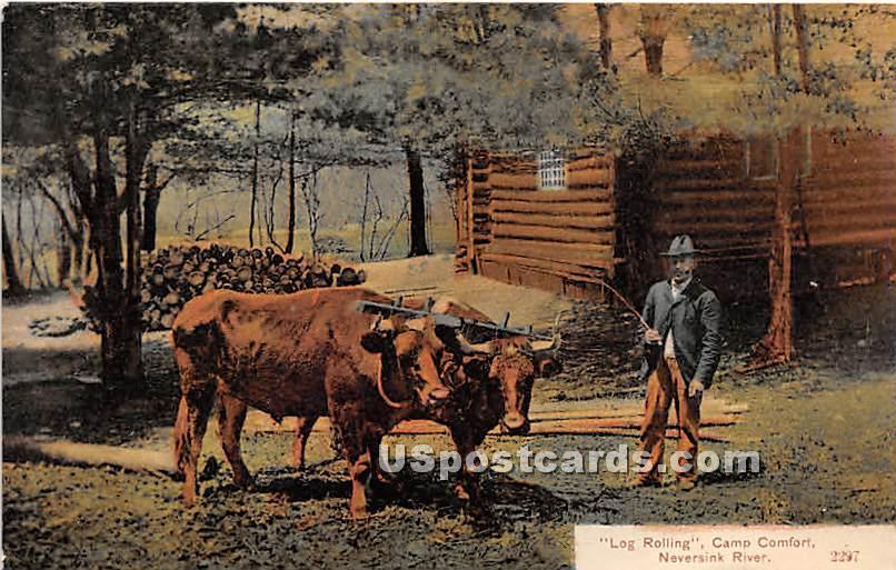 Log Rolling Camp Comfort - Neversink, New York NY Postcard