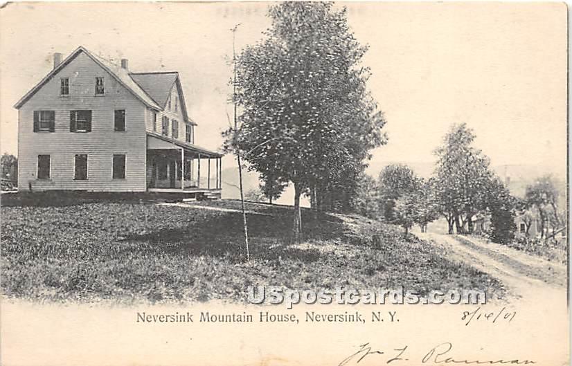 Neversink Mountain House - New York NY Postcard