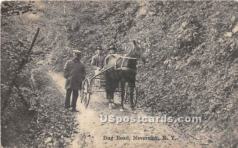 Dug Road - Neversink, New York NY Postcard