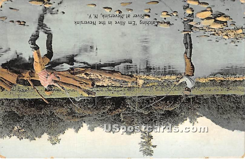 Catching Em Alive in the Neversink River - New York NY Postcard