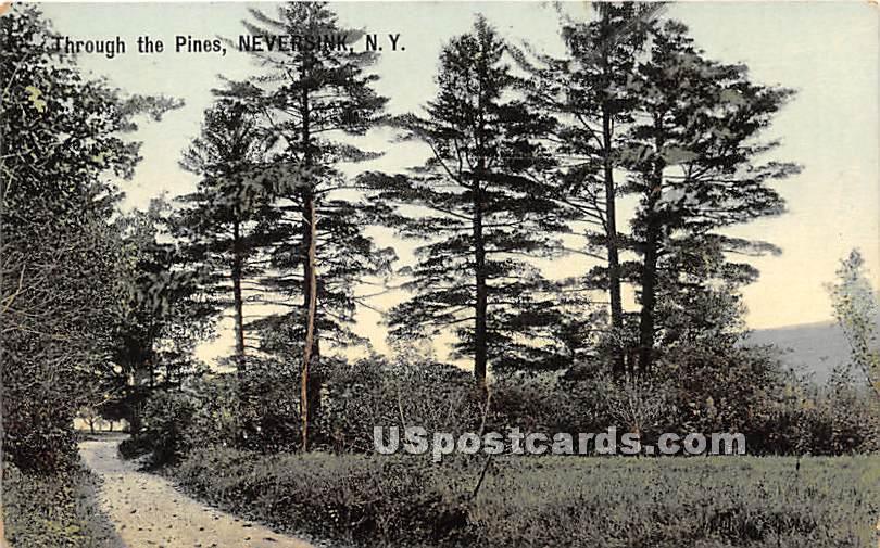Through the Pines - Neversink, New York NY Postcard