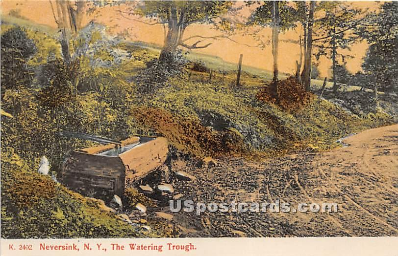 Watering Trough - Neversink, New York NY Postcard