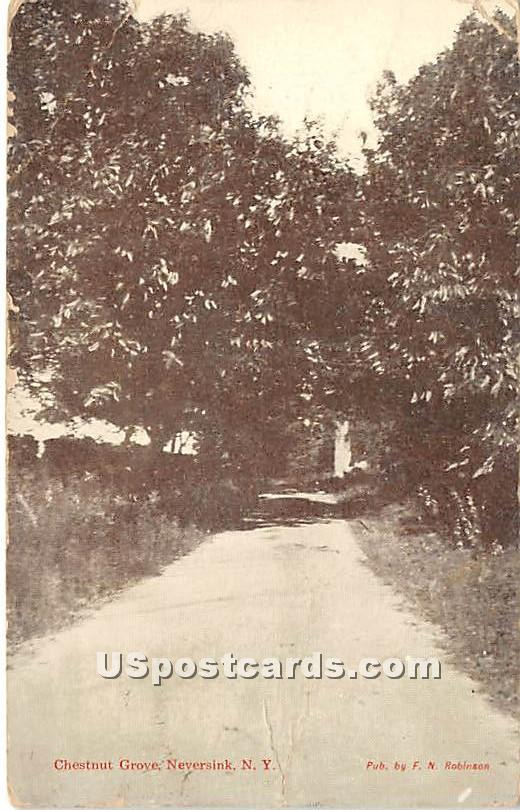 Chestnut Grove - Neversink, New York NY Postcard
