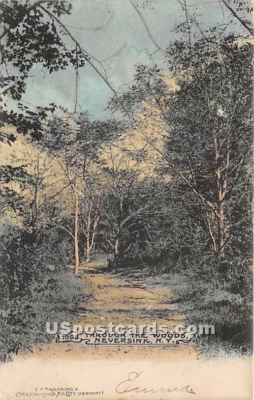 Through the Woods - Neversink, New York NY Postcard