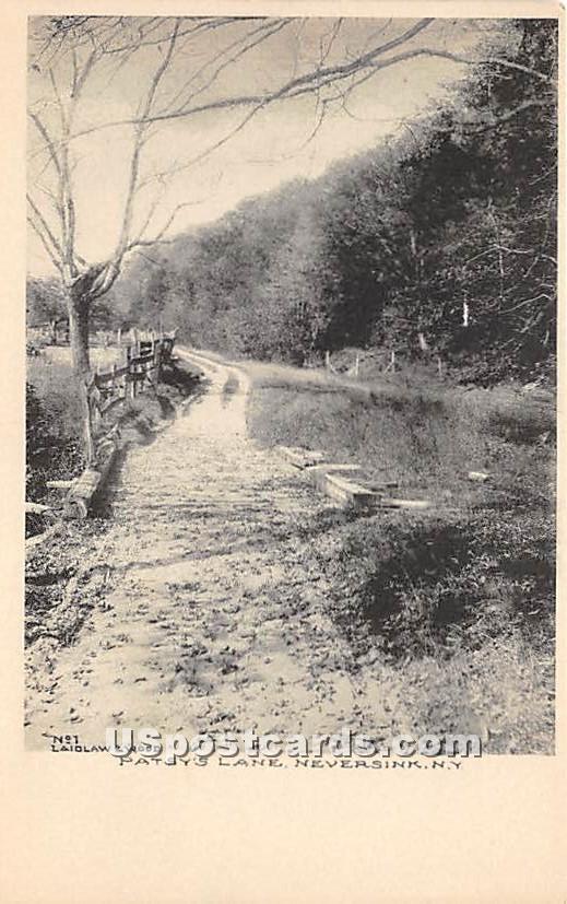 Patsys Lane - Neversink, New York NY Postcard