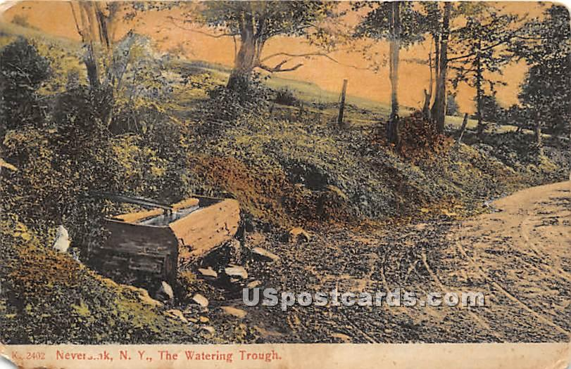 The Watering Trough - Neversink, New York NY Postcard