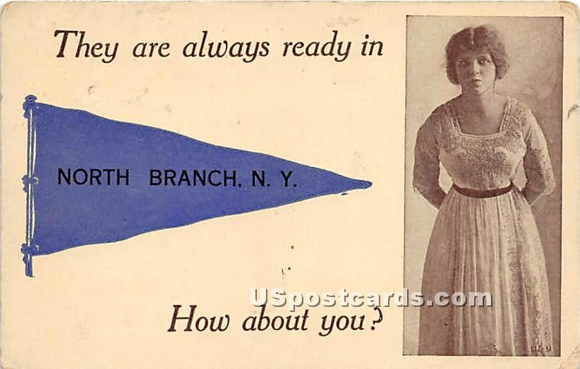 They are always ready - North Branch, New York NY Postcard