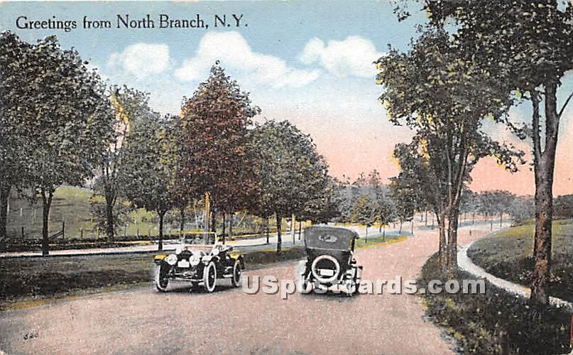 Greetings from - North Branch, New York NY Postcard