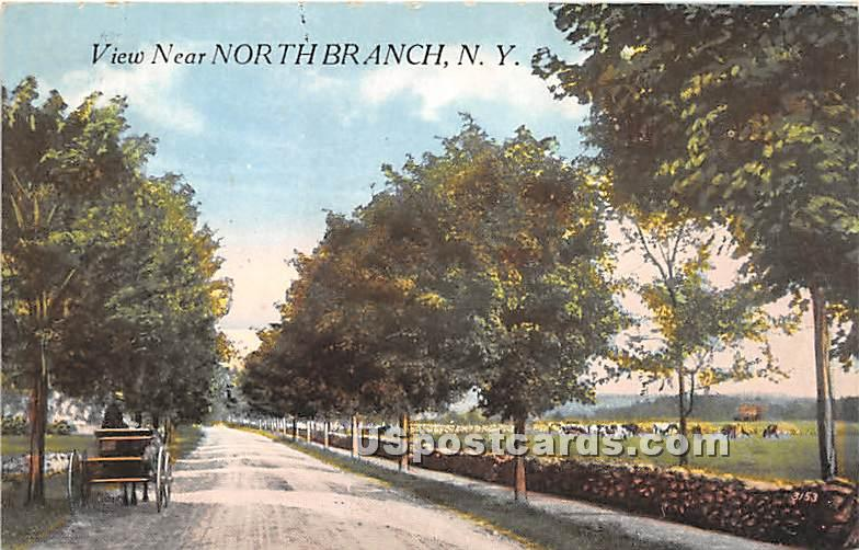 View Near - North Branch, New York NY Postcard