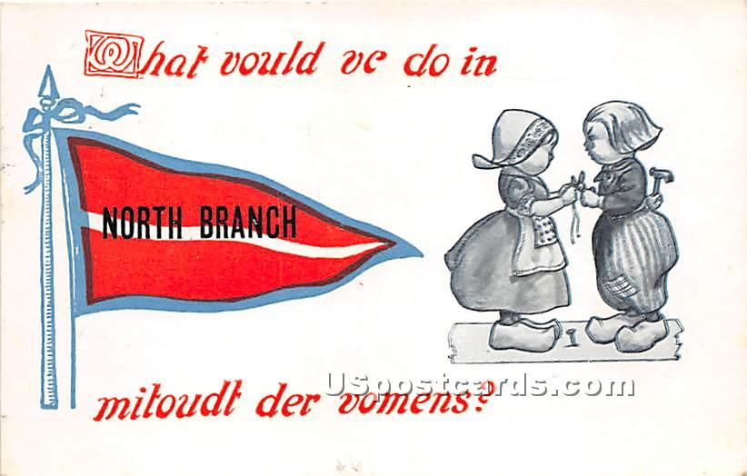 What vould ve do in - North Branch, New York NY Postcard