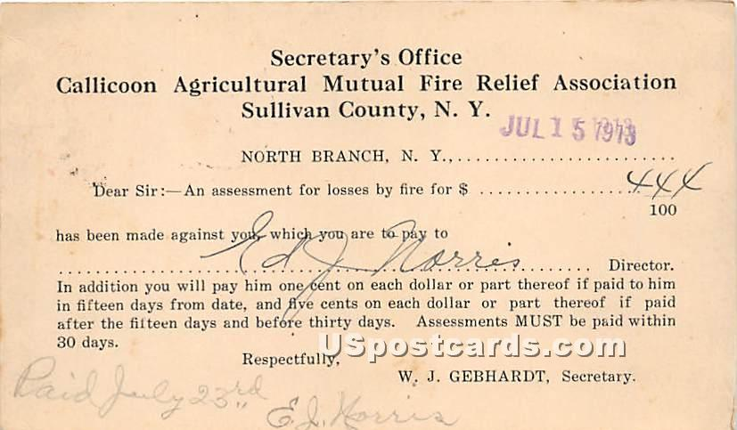 Callicoon Agricultural Mutual Fire Relief Association - North Branch, New York NY Postcard