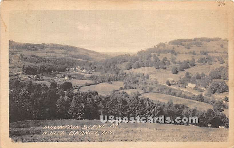 Mountain Scene - North Branch, New York NY Postcard
