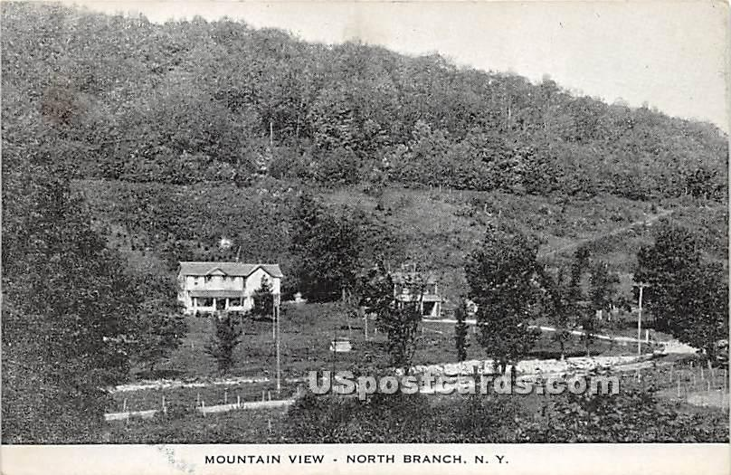 Mountain View - North Branch, New York NY Postcard