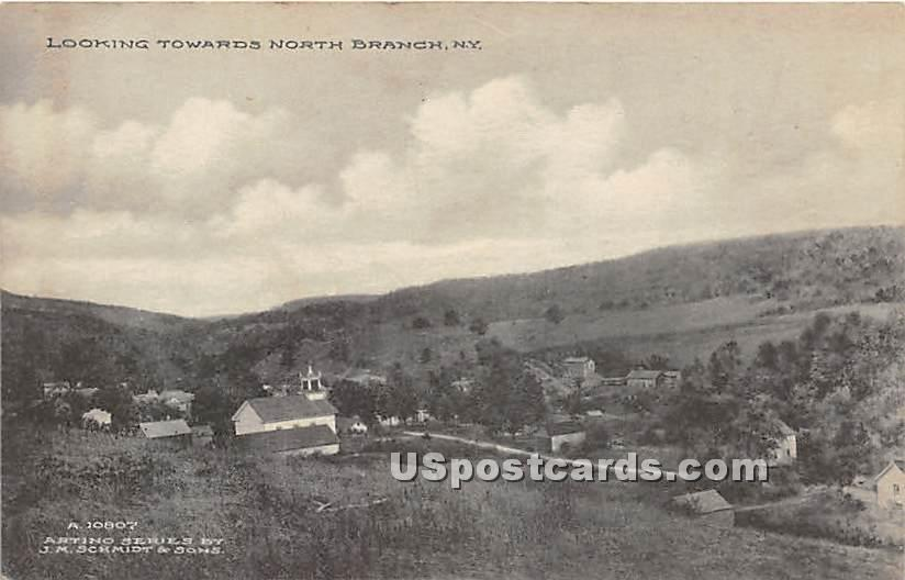 Looking Towards - North Branch, New York NY Postcard