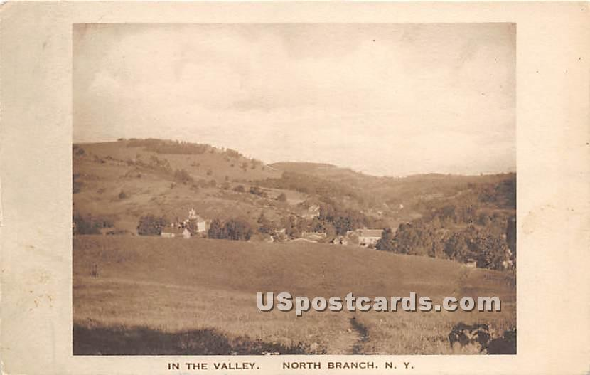 In the Valley - North Branch, New York NY Postcard