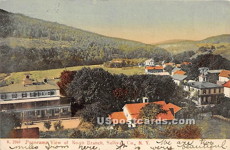Panorama View - North Branch, New York NY Postcard