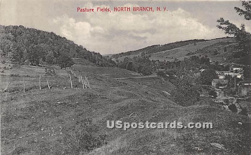 Pasture Fields - North Branch, New York NY Postcard