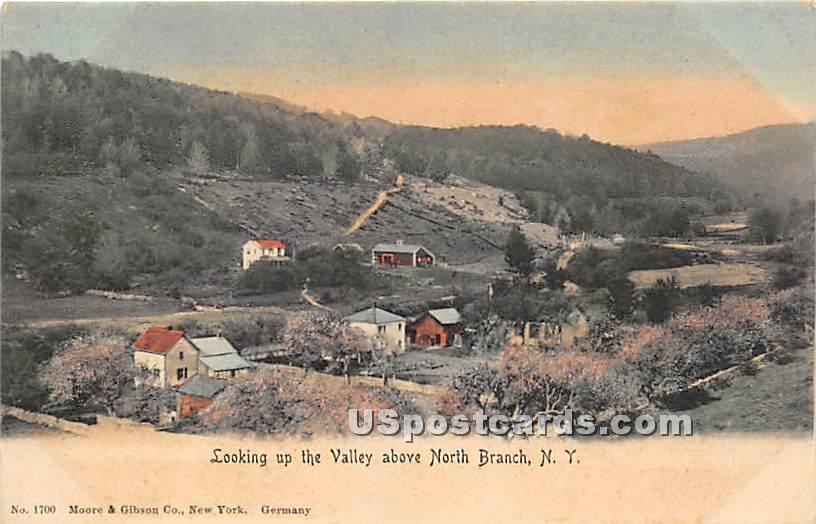 Looking up the Valley - North Branch, New York NY Postcard