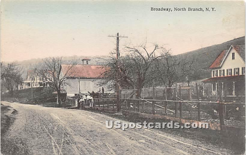 Broadway - North Branch, New York NY Postcard