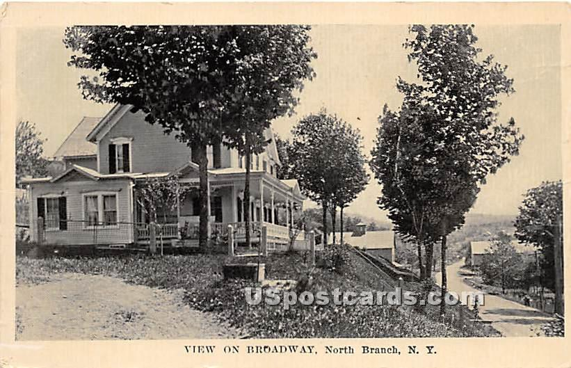View of Broadway - North Branch, New York NY Postcard