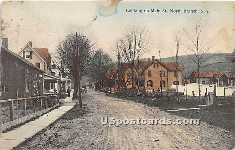 Looking up Main Street - North Branch, New York NY Postcard