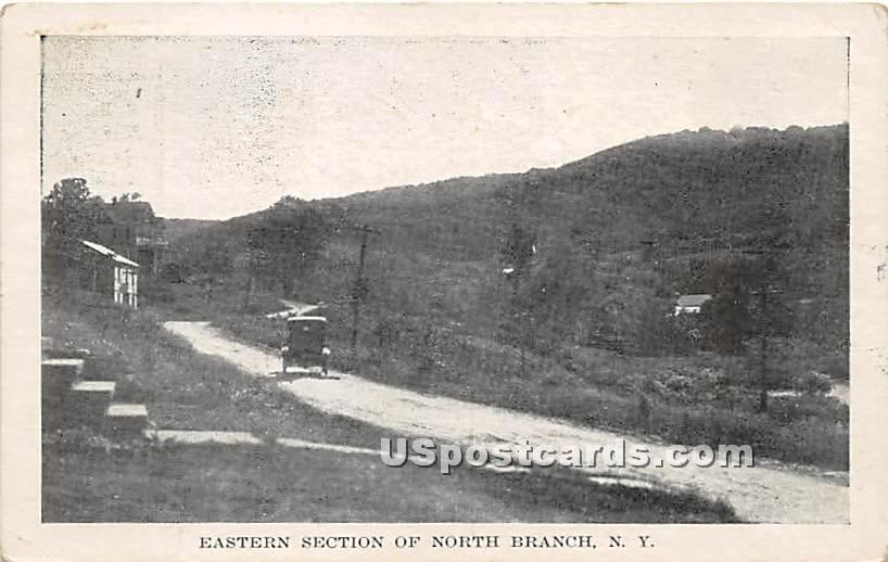 Eastern Section - North Branch, New York NY Postcard