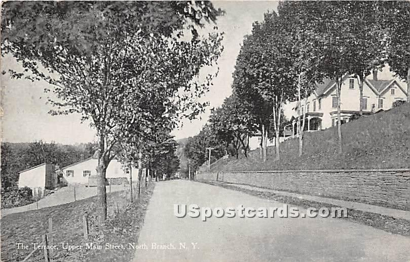 The Terrace - North Branch, New York NY Postcard
