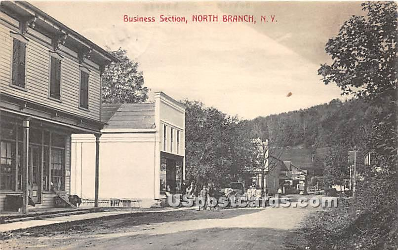 Business Section - North Branch, New York NY Postcard