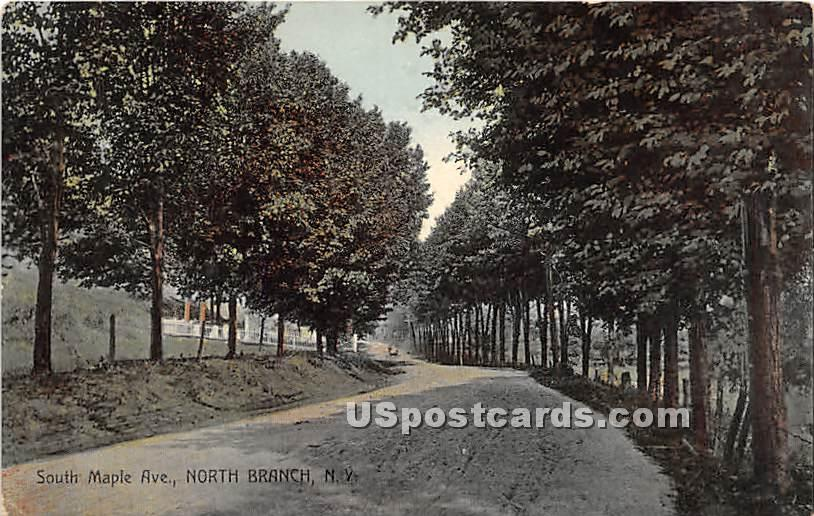 South Maple Avenue - North Branch, New York NY Postcard