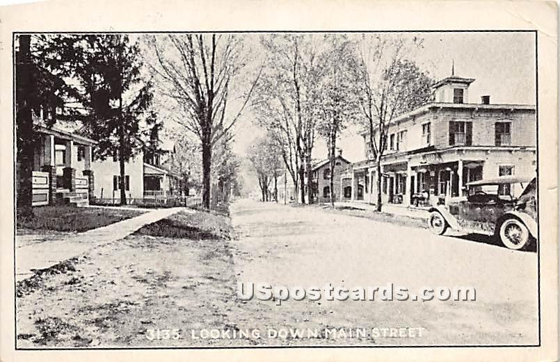 Looking Down Main Street - North Branch, New York NY Postcard