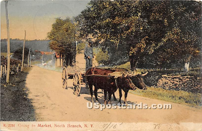 Going to the Market - North Branch, New York NY Postcard