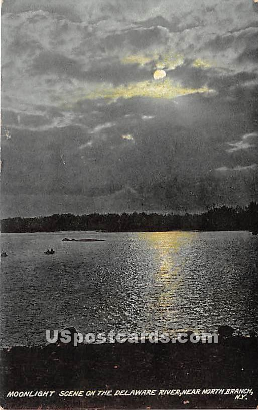 Moonlight Scene on the Delaware River - North Branch, New York NY Postcard