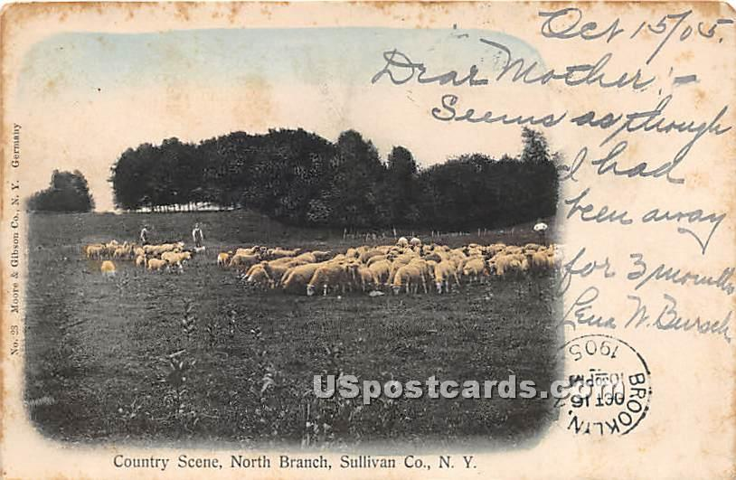 Country Scene - North Branch, New York NY Postcard