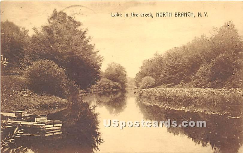 Lake in the Creek - North Branch, New York NY Postcard
