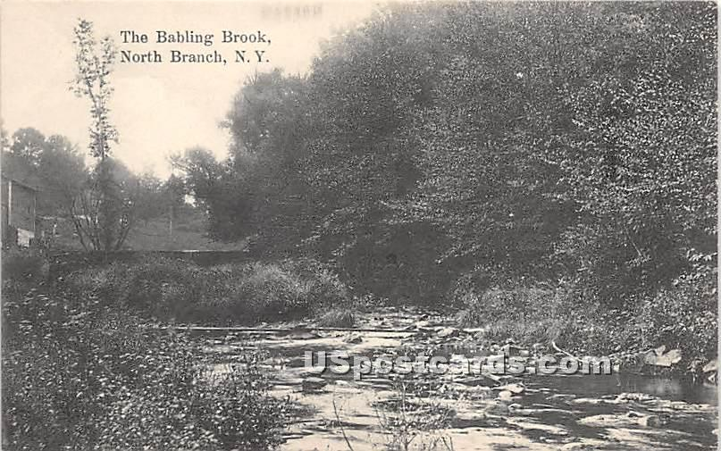 The Babling Brook - North Branch, New York NY Postcard