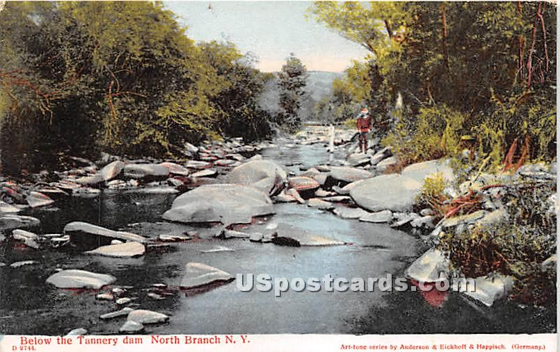 Below the Tannery Dam - North Branch, New York NY Postcard