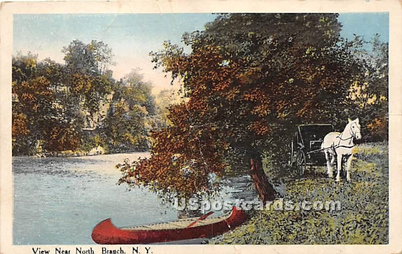 Water View - North Branch, New York NY Postcard