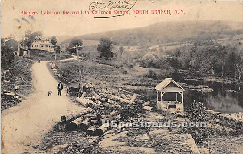 Klingers Lake on the Road to Callicoon Centre - North Branch, New York NY Postcard
