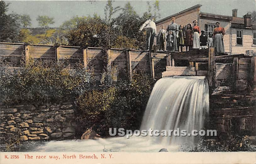 The Race Way - North Branch, New York NY Postcard