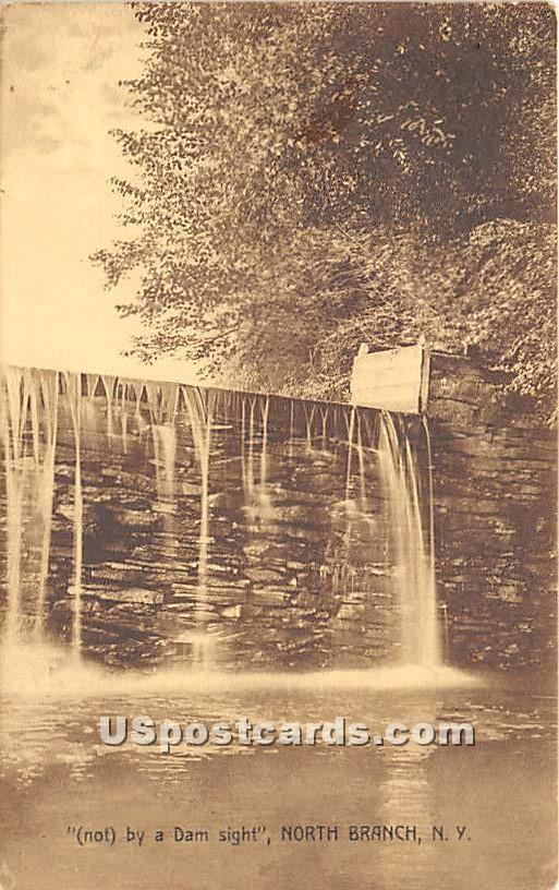 Not by a Dam Sight - North Branch, New York NY Postcard