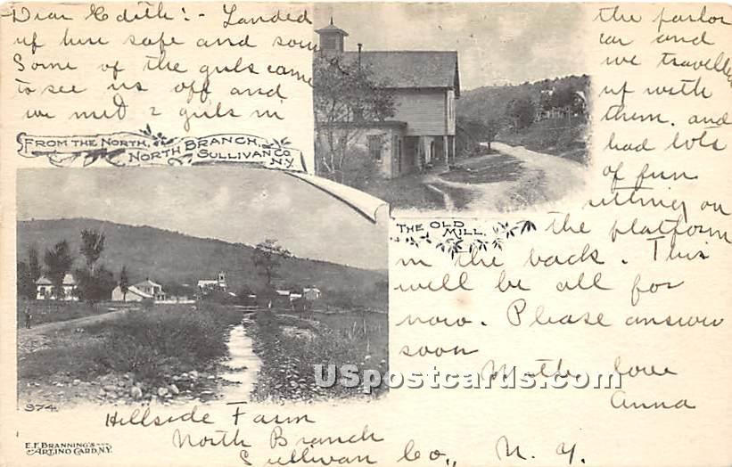 The Old Mill - North Branch, New York NY Postcard