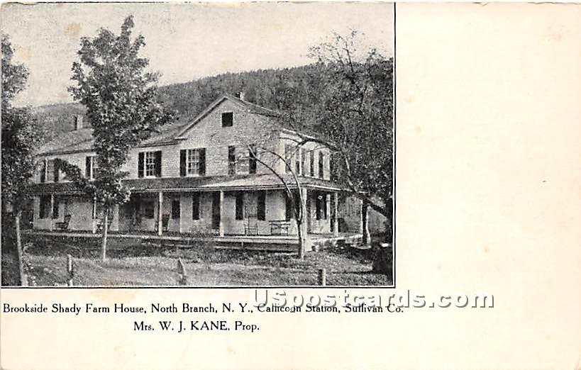 Brookside Shady Farm House - North Branch, New York NY Postcard