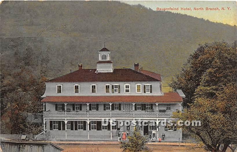 Bauernfeind Hotel - North Branch, New York NY Postcard